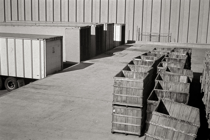 Loading Dock, Cranberry Crates