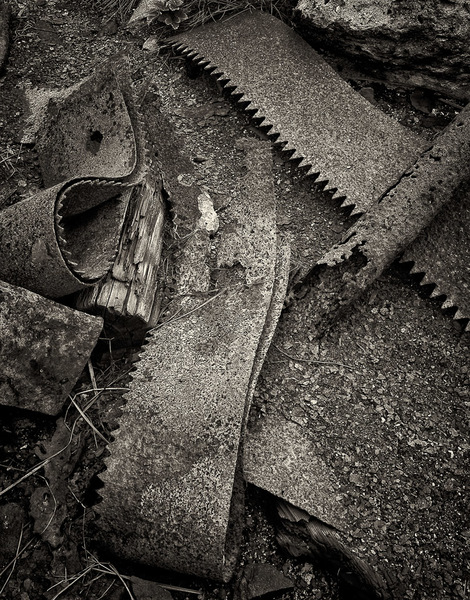 Six inch wide ban saw blades left in the soil
