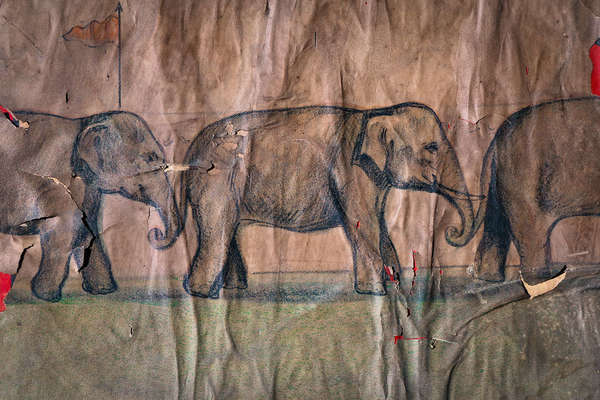 Parade, Three Elephants