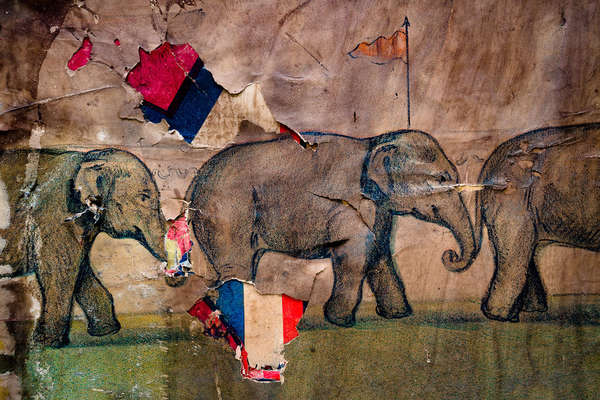 Parade, Three Elephants, Tear